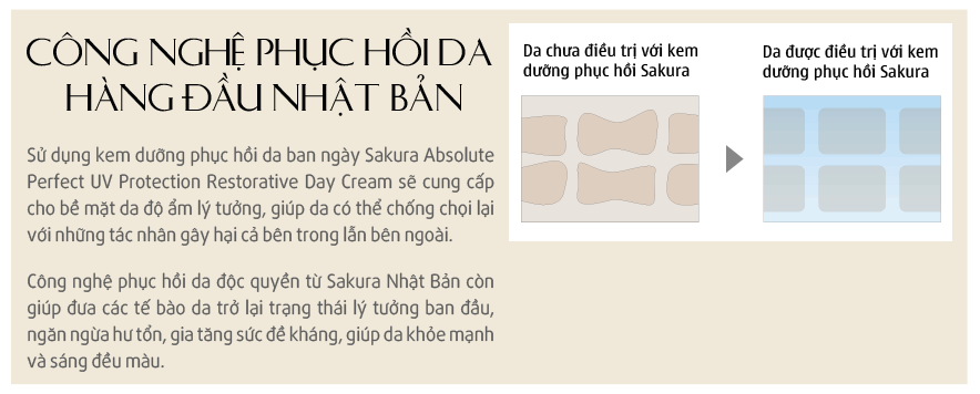 kem-duong-trang-phuc-hoi-da-sakura-absolute-perfect-uv-protection-restorative-day-cream-e