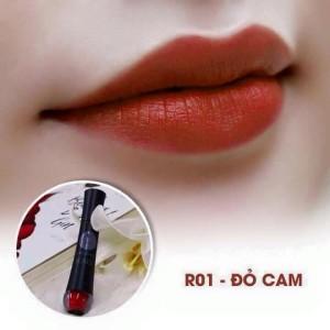 RO1-do-cam